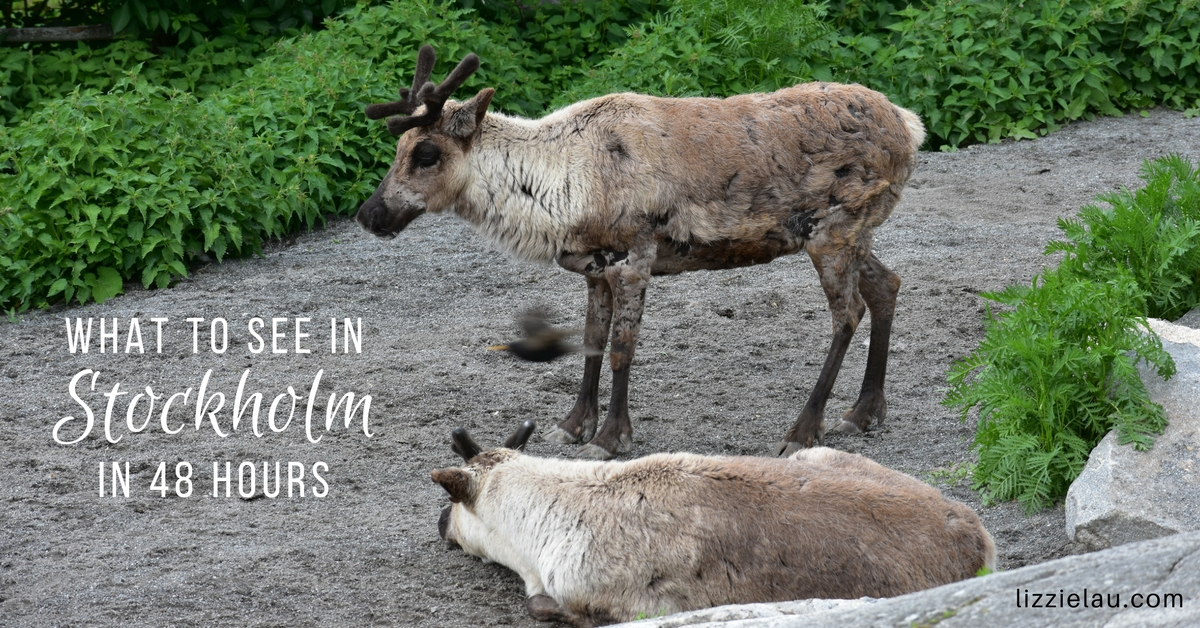 What to see in Stockholm with kids in 48 Hours