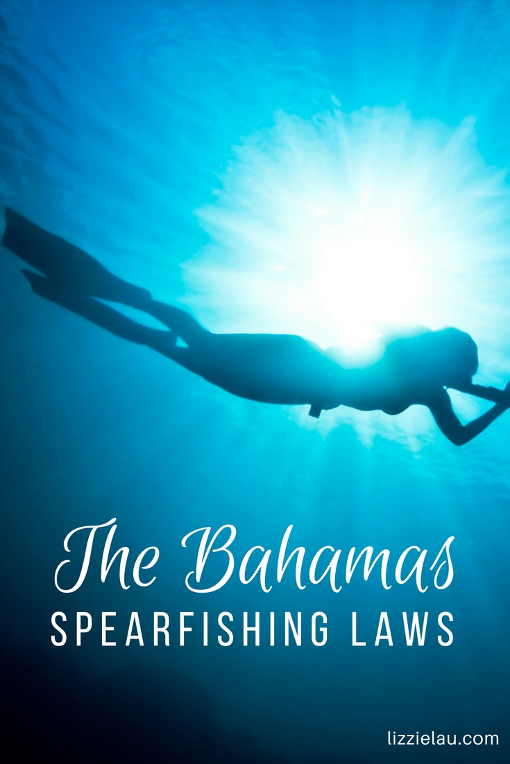 The Bahamas Spearfishing Laws