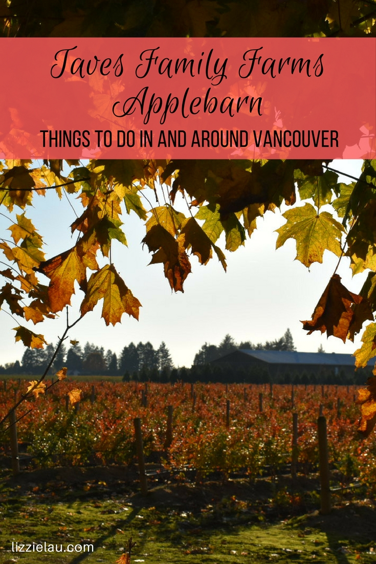 Taves Family Farms Applebarn - Things to do in and around Vancouver #canada #vancouver #abbotsford #familytravel