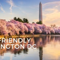 Kid-Friendly Washington DC Adventure