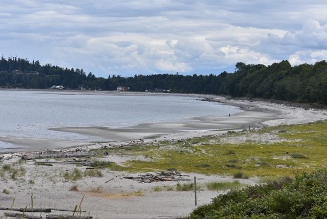 Things to do in Comox with kids - Air Force Beach