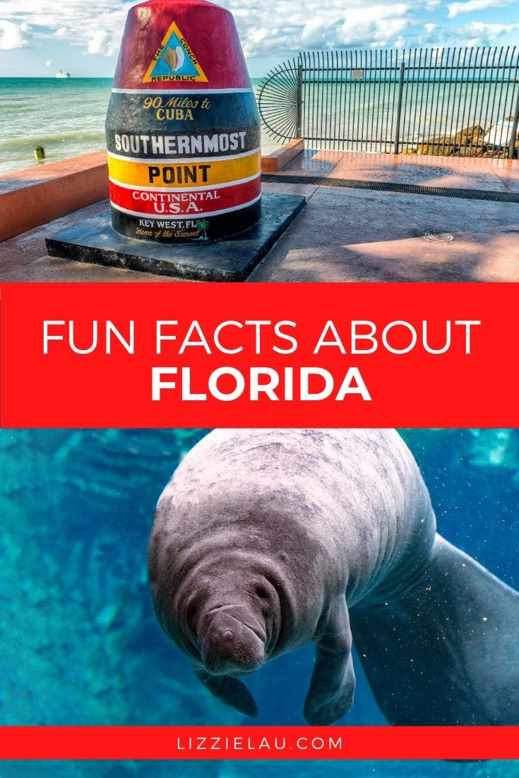 6 Fun Facts About Florida #LoveFL