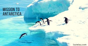 mission to antarctica to see penguins
