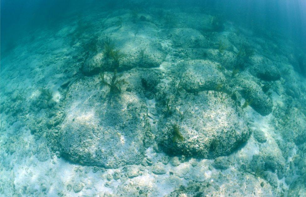 Bimini Road underwater formation