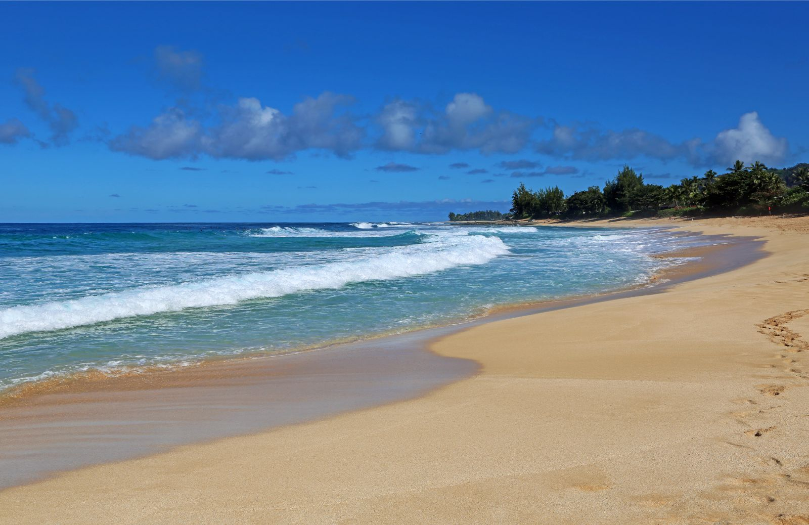 Hawaii family vacation Waimea Bay Beach