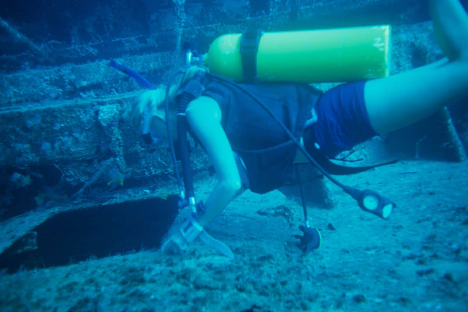 dive on wrecks in the bahamas