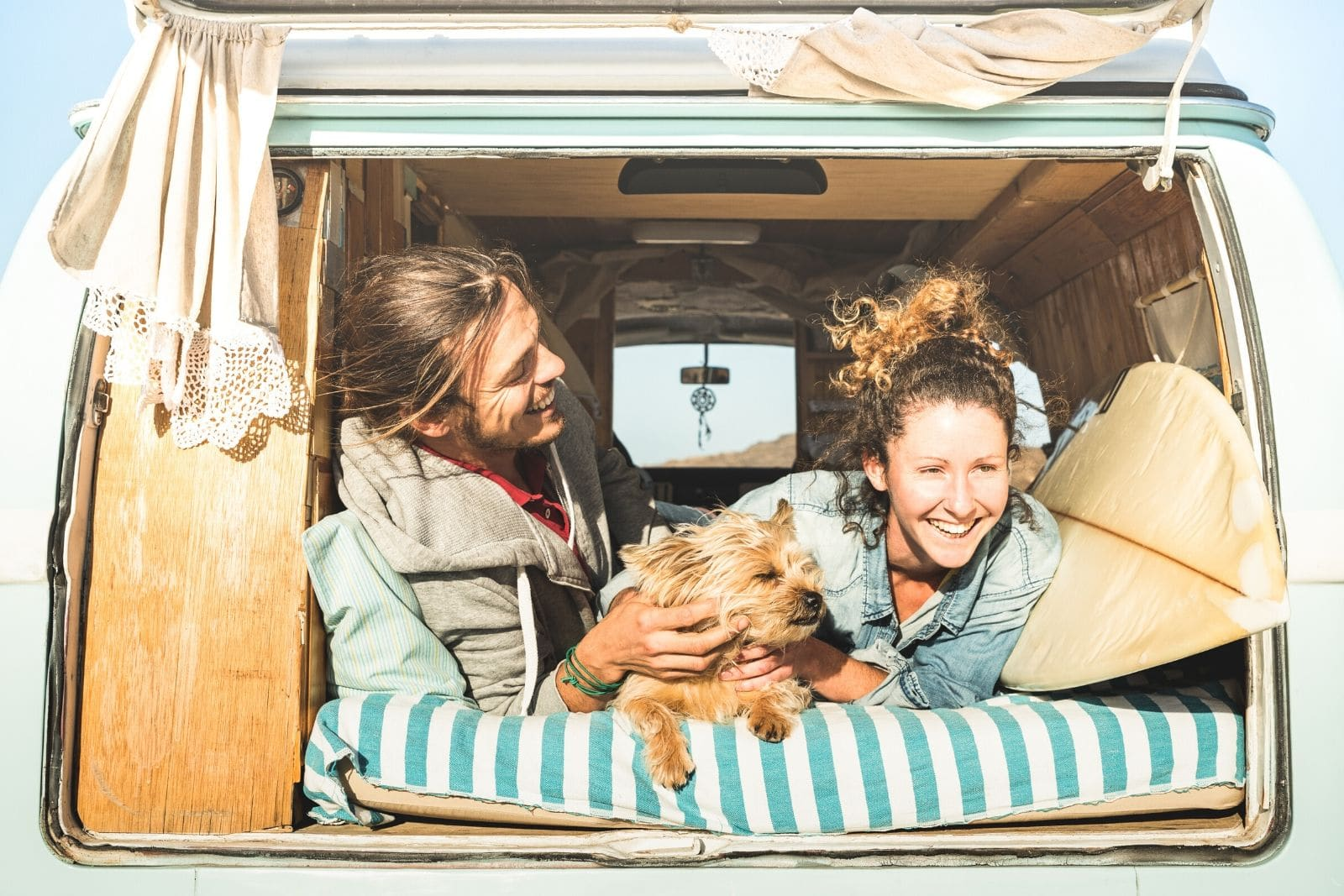 traveling with a Dog in an RV